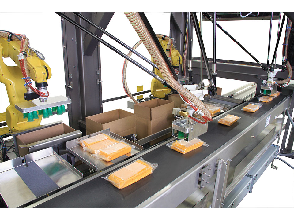 Vision Guided Packaging - Robotic Case Packer - Robotic Case Packers